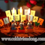Cách làm bánh sinh nhật tại nhà